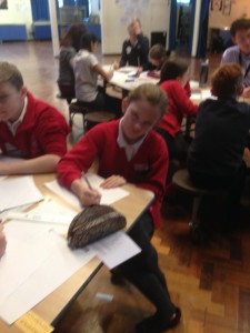 Maths reasoning 3